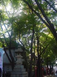 071123神楽坂赤城神社 (3)90