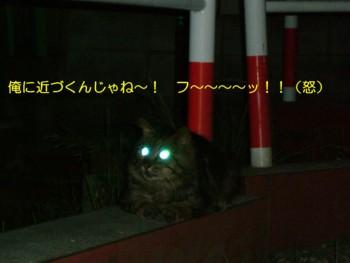 4koma-manga-1-3.jpg