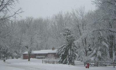 snow033108.jpg