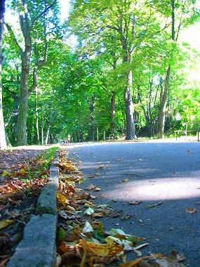 シュバルツェンベルク公園1