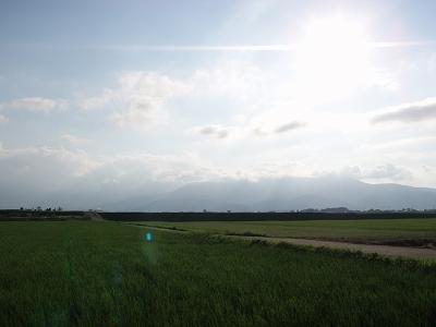 s-P8150021.jpg