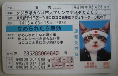 nameneko-m3.jpg
