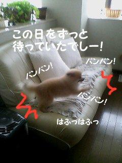 20060707080414.jpg