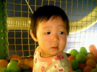 ボールプールにびびる娘