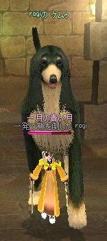 mabinogi_2007_08_23_025.jpg