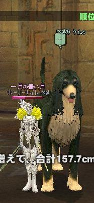 mabinogi_2007_08_23_027.jpg