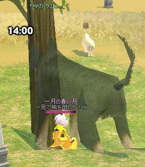 mabinogi_2007_08_23_033.jpg