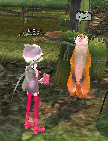 mabinogi_2007_09_20_008.jpg