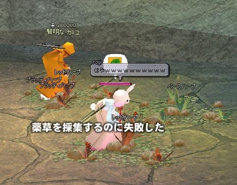 mabinogi_2007_09_21_001.jpg