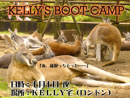bootcamp-s.jpg