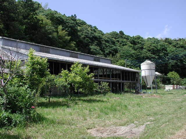 ハレの牛舎