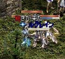 2007-10-19-16.jpg