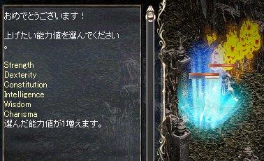 2008-01-26-4.jpg