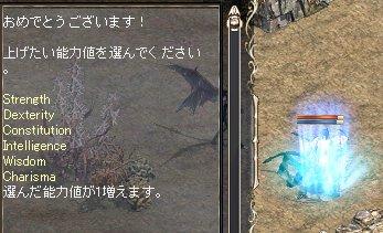2008-01-27-5.jpg