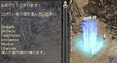 2008-01-29-1.jpg