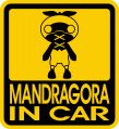 MANDRAGORA IN CAR