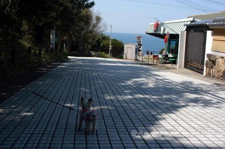 白浜三段壁