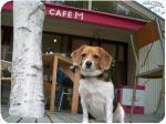 cafe M & LINDA