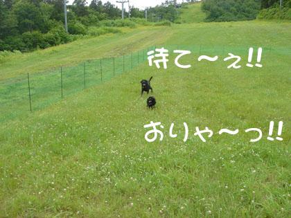 ryu0015.jpg