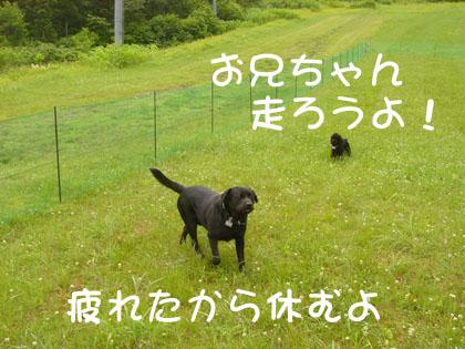 ryu0016.jpg