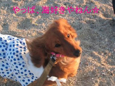 okuramomo21.jpg