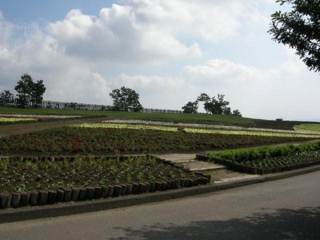 花公園(4)