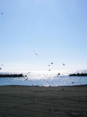 photo93