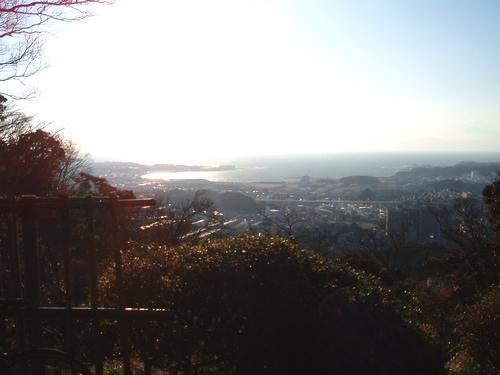 武山富士山見晴台からの眺望