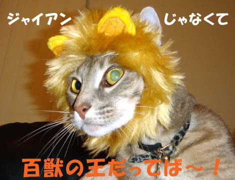 060502shion-lion.jpg