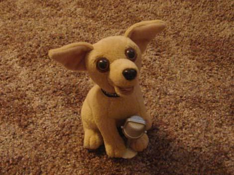 tacobelldog.jpg