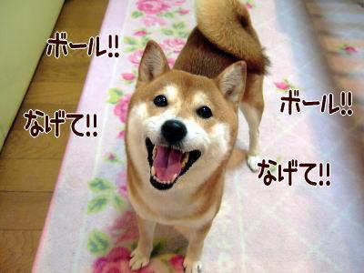 いくらでも投げちゃうわよ~!!
