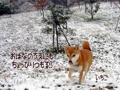 冷たいね~