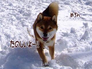 雪大好き!!