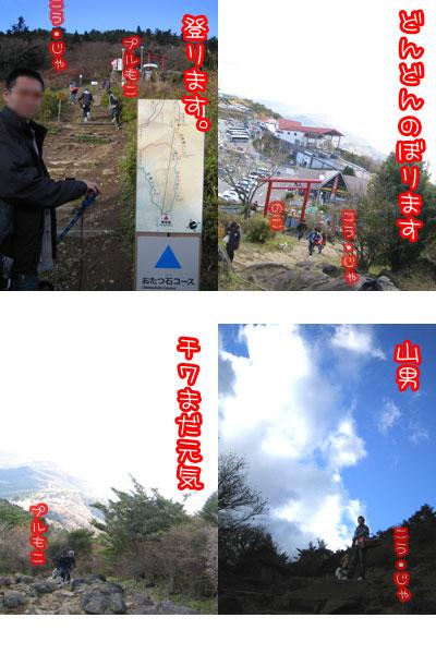 20061212165101.jpg
