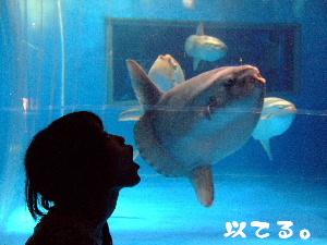 2007_09100116.jpg