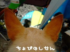 2007_0922(028).jpg