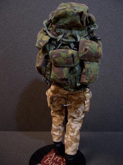 SAS13.jpg