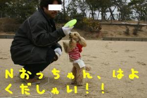 184_8406hp.jpg