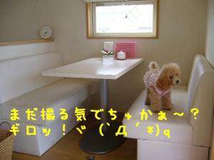 20050911183427.jpg