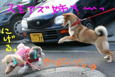 IMG_0944hphp.jpg