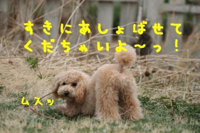 IMG_1502hp.jpg