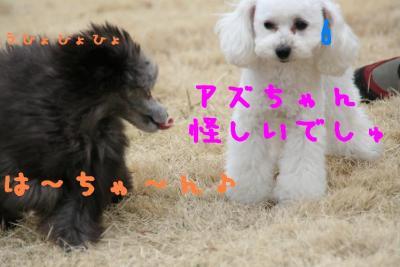 IMG_1574hp.jpg
