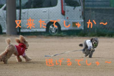 IMG_5549hp.jpg