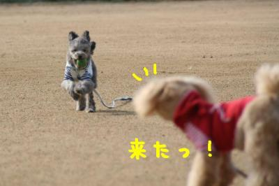IMG_5694hp.jpg