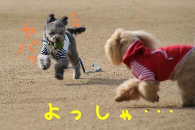 IMG_5695hp.jpg