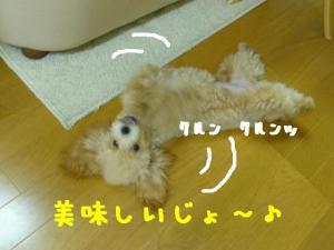 P1020668hp.jpg