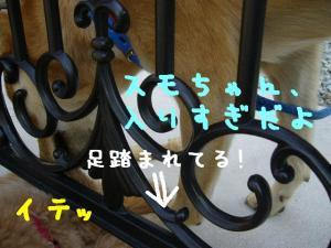 P1050911hp.jpg