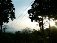 20060520a.jpg