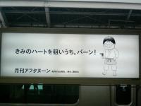 20060916e.jpg