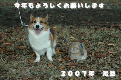 20070101162955.jpg
